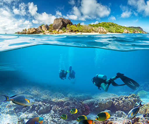 Mauritius Diving and Diving Courses