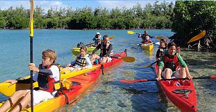 Sea Kayaking Trip - Ile d'Ambre Island - Half Day